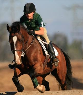 Horseback Riding Saddle Up For Fitness