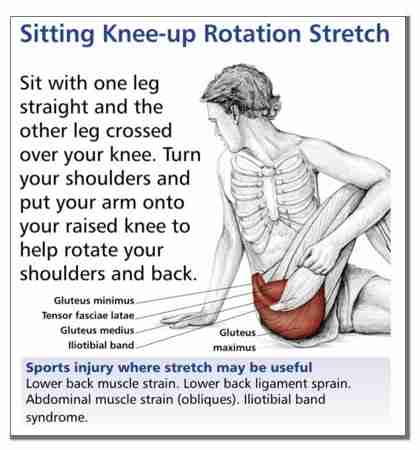 Stretching Charts | Anatomical Stretching Charts | Stretch Chart