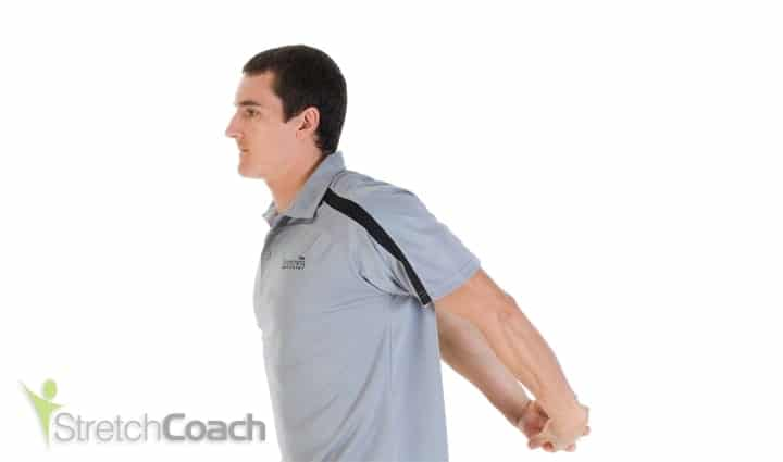 Desk stretch for the shoulders