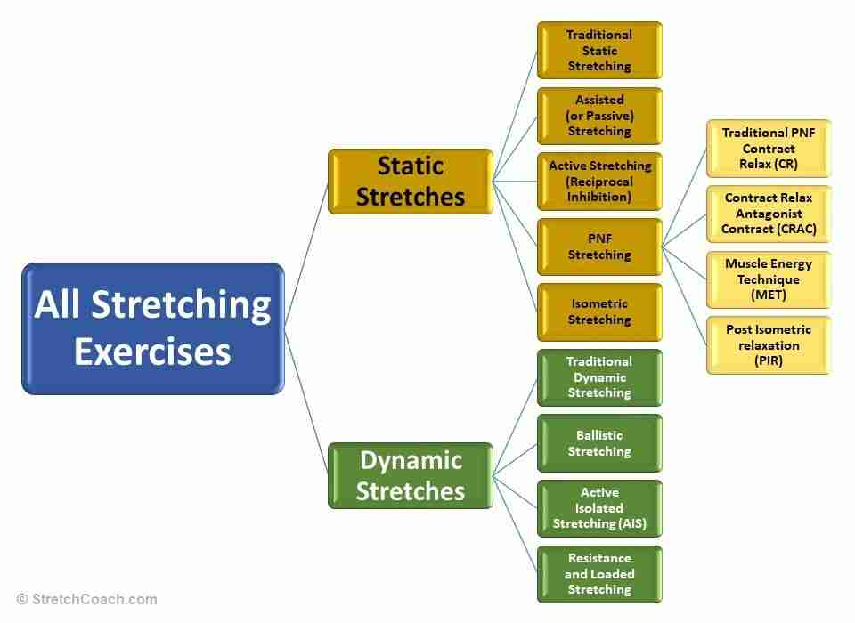 Hierarchy of Different Stretching Exercises