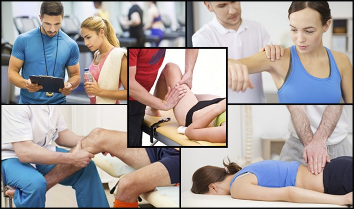 PT's, Massage Therapists, Trainers