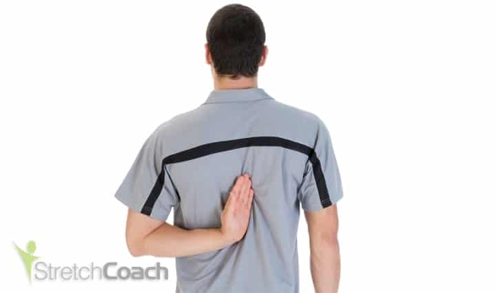 Shoulder external rotators stretch for swimming